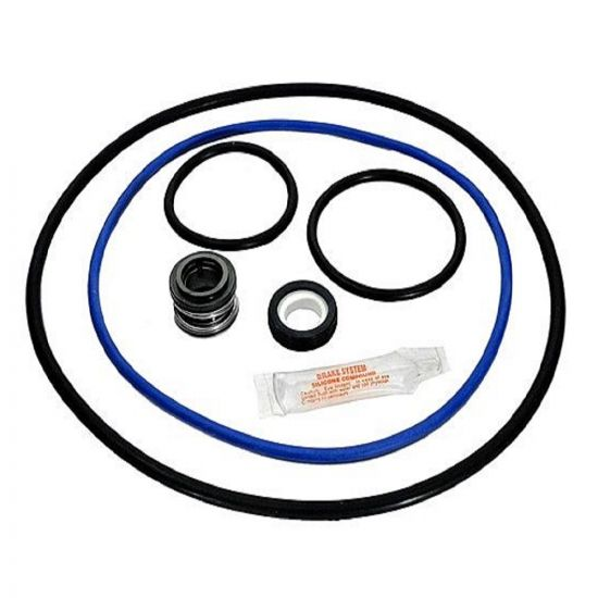 Aladdin Hayward NorthStar Seal and Gasket Kit, GO-KIT66