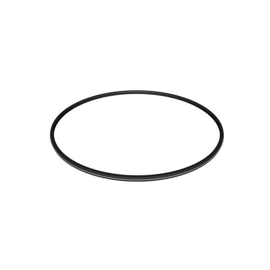 Hayward, Pro Grid & SwimClear Filters, Metal Reinforced Filter O-Ring Seal, DEX2422Z2