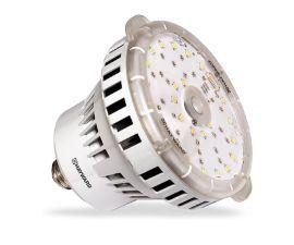 Hayward, ColorLogic, Color LED Bulb, 120V, 10 Colors | BPCUS11120