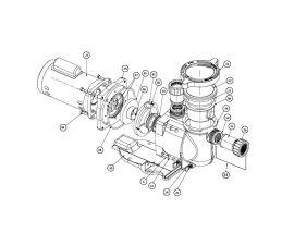 SuperFlo 1HP 115/208-230V Pump Parts   348023