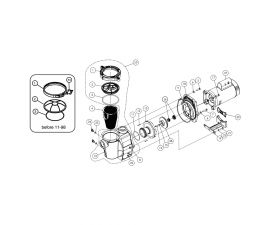 Whisperflo 2HP Pump |011515 | 011529