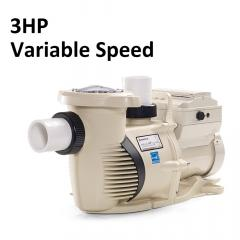 IntelliFloXF 3HP 230V Pump | 022055
