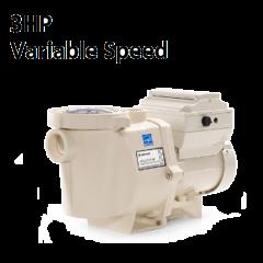 IntelliFlo 3HP 230V Pump | 011028