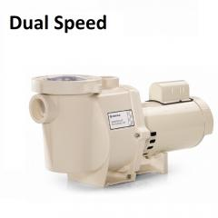 Dual Speed Pump Parts